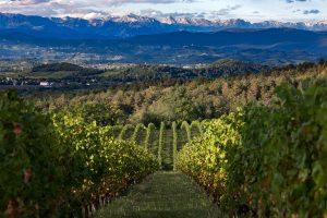 Castelvecchio - Il terroir